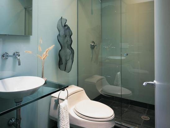 519d3__Walk-in-Shower-Designs-for-Small-Bathrooms