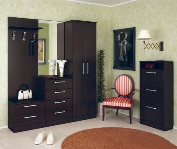 contemporary-closet-storage