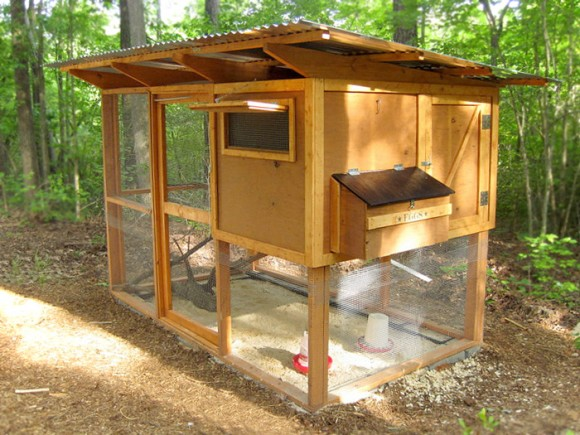 north-carolina-chicken-coop