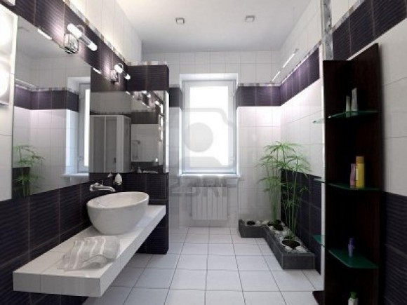 pretentious-bathroom-decor-in-black-and-white-with-awesome-shower-room-and-corner-shelf-equipped-with-large-mirror-idea-and-sink-also-plants-800x600